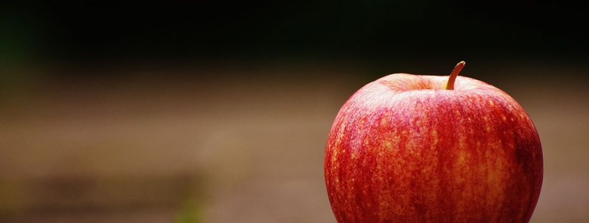 Apple sitting on the ground