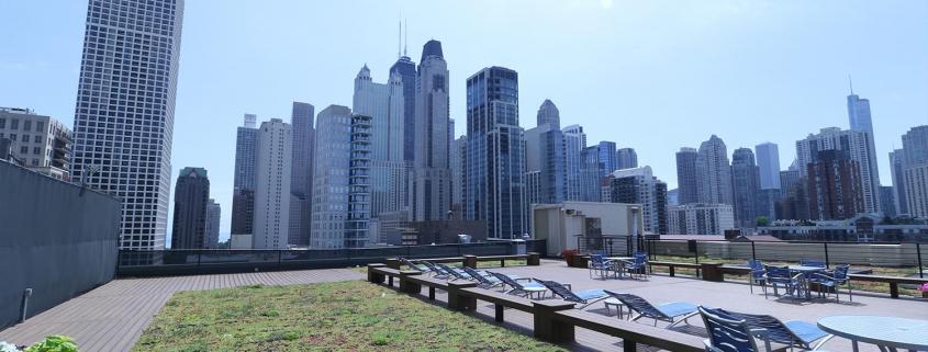 FFC Gold Coast Roof Deck